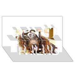 Boykin Spaniel Best Friends 3D Greeting Card (8x4)