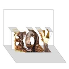 Boykin Spaniel BOY 3D Greeting Card (7x5)