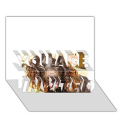 Boykin Spaniel YOU ARE INVITED 3D Greeting Card (7x5)