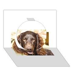 Boykin Spaniel Circle 3D Greeting Card (7x5)