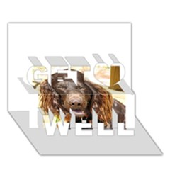 Boykin Spaniel Get Well 3D Greeting Card (7x5)