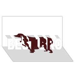Boykin Spaniel BEST BRO 3D Greeting Card (8x4)