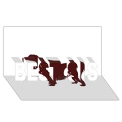 Boykin Spaniel BEST SIS 3D Greeting Card (8x4)