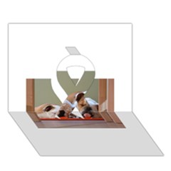 2 Sleeping Bulldogs Ribbon 3D Greeting Card (7x5)