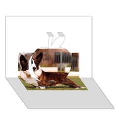 Cardigan Welsh Corgi Full Apple 3D Greeting Card (7x5)