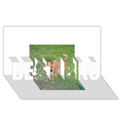 Carolina Dog Full 2 BEST BRO 3D Greeting Card (8x4)