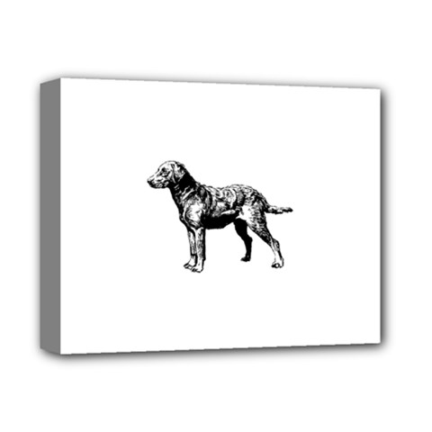 Chesapeake Bay Retriever Drawing Deluxe Canvas 14  x 11