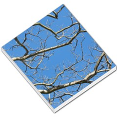 Leafless Tree Branches Against Blue Sky Small Memo Pads