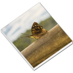 Butterfly Against Blur Background At Iguazu Park Small Memo Pads