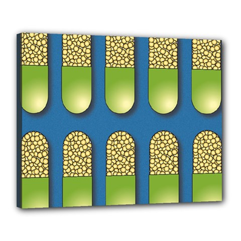 Capsule Pattern Canvas 20  x 16