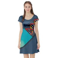 Dna Capsule Short Sleeve Skater Dresses
