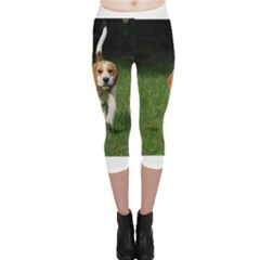 Beagle Walking Capri Leggings