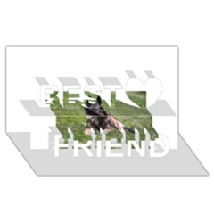 Belgian Tervuren Laying Best Friends 3D Greeting Card (8x4)