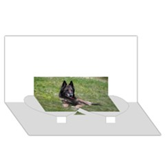 Belgian Tervuren Laying Twin Heart Bottom 3D Greeting Card (8x4)