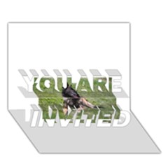 Belgian Tervuren Laying YOU ARE INVITED 3D Greeting Card (7x5)