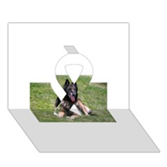 Belgian Tervuren Laying Ribbon 3D Greeting Card (7x5)