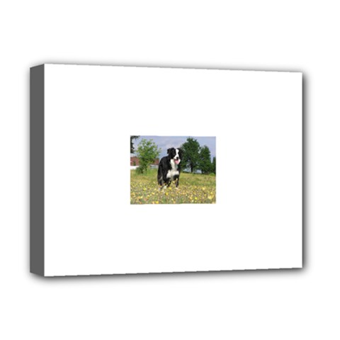 Border Collie Full 3 Deluxe Canvas 16  x 12