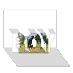 Border Collie Full 3 BOY 3D Greeting Card (7x5)