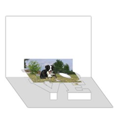 Border Collie Full 3 LOVE Bottom 3D Greeting Card (7x5)