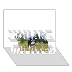 Border Collie Full 3 YOU ARE INVITED 3D Greeting Card (7x5)