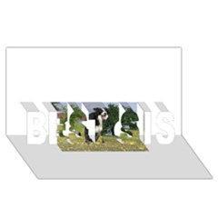 Border Collie Full 3 BEST SIS 3D Greeting Card (8x4)