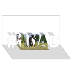 Border Collie Full 3 #1 DAD 3D Greeting Card (8x4)