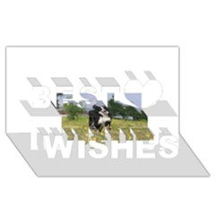 Border Collie Full 3 Best Wish 3D Greeting Card (8x4)