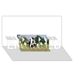 Border Collie Full 3 ENGAGED 3D Greeting Card (8x4)