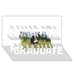 Border Collie Full 3 Congrats Graduate 3D Greeting Card (8x4)
