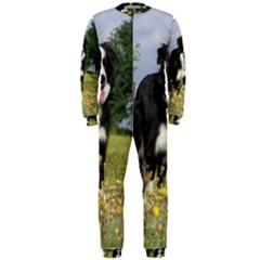 Border Collie Full 3 OnePiece Jumpsuit (Men)