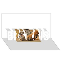 Border Terrier Sleeping BEST SIS 3D Greeting Card (8x4)