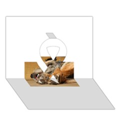 Border Terrier Sleeping Ribbon 3D Greeting Card (7x5)