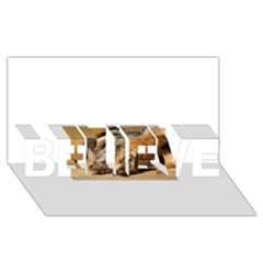 Border Terrier Sleeping BELIEVE 3D Greeting Card (8x4)