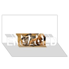 Border Terrier Sleeping ENGAGED 3D Greeting Card (8x4)
