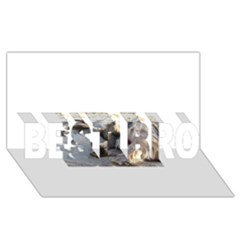 Cairn Terrier Sleeping On Beach BEST BRO 3D Greeting Card (8x4)