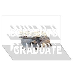 Cairn Terrier Sleeping On Beach Congrats Graduate 3D Greeting Card (8x4)