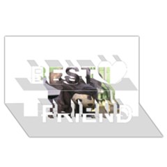 Cane Corso Best Friends 3D Greeting Card (8x4)
