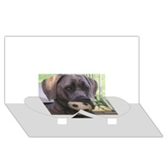 Cane Corso Twin Heart Bottom 3D Greeting Card (8x4)