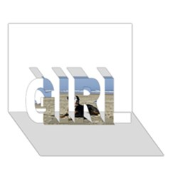 Bernese Mountain Dog Laying On Beach GIRL 3D Greeting Card (7x5)
