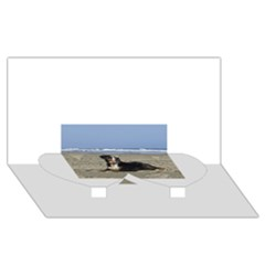 Bernese Mountain Dog Laying On Beach Twin Heart Bottom 3D Greeting Card (8x4)