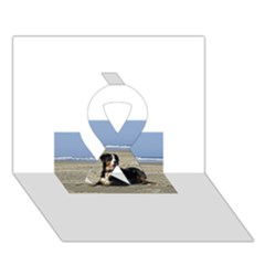 Bernese Mountain Dog Laying On Beach Ribbon 3D Greeting Card (7x5)