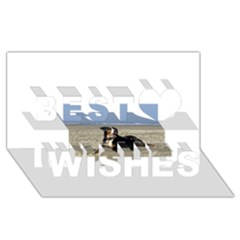 Bernese Mountain Dog Laying On Beach Best Wish 3D Greeting Card (8x4)