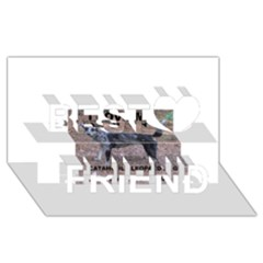 Catahoula Love With Picture Best Friends 3D Greeting Card (8x4)