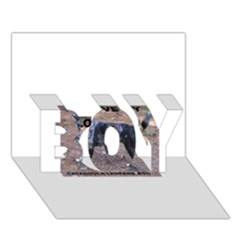 Catahoula Love With Picture BOY 3D Greeting Card (7x5)