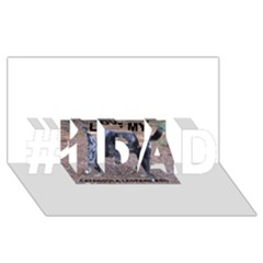 Catahoula Love With Picture #1 DAD 3D Greeting Card (8x4)
