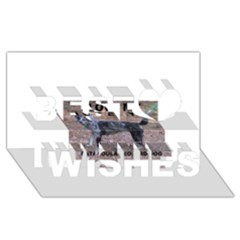 Catahoula Love With Picture Best Wish 3D Greeting Card (8x4)