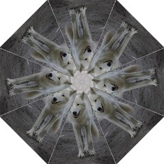 White Wolf Folding Umbrellas