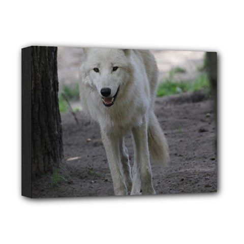 White Wolf Deluxe Canvas 16  x 12