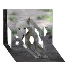 White Wolf BOY 3D Greeting Card (7x5)
