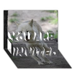 White Wolf YOU ARE INVITED 3D Greeting Card (7x5)